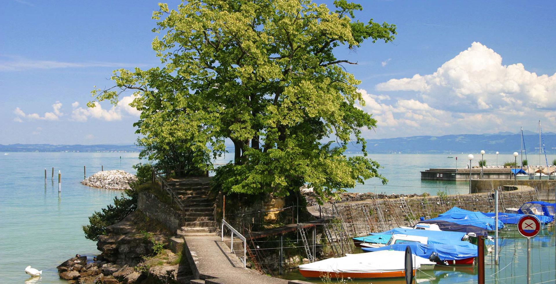 Slide-Inseli-Romanshorn-Park-Hotel-Inseli-IMG_2306-1920-980